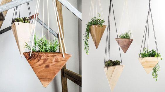 decoracin con plantas colgantes - Plantas Colgantes