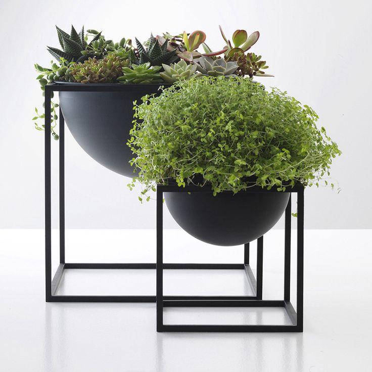 Decoracion Con Plantas Para Interior Y Exterior 20