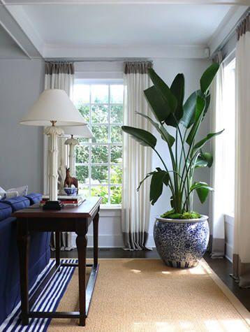 Ideas para decorar tu sala con plantas – Decoracion de interiores ...