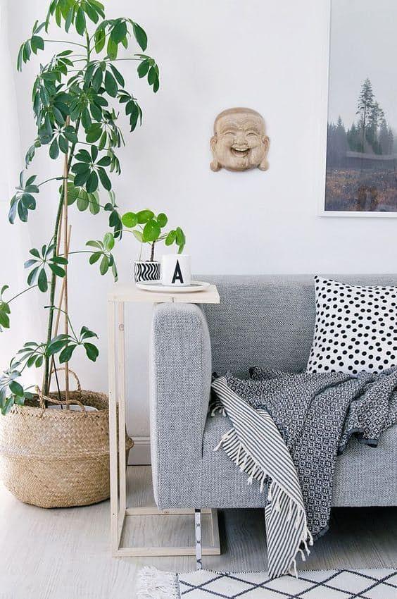 Plantas para casas de infonavit