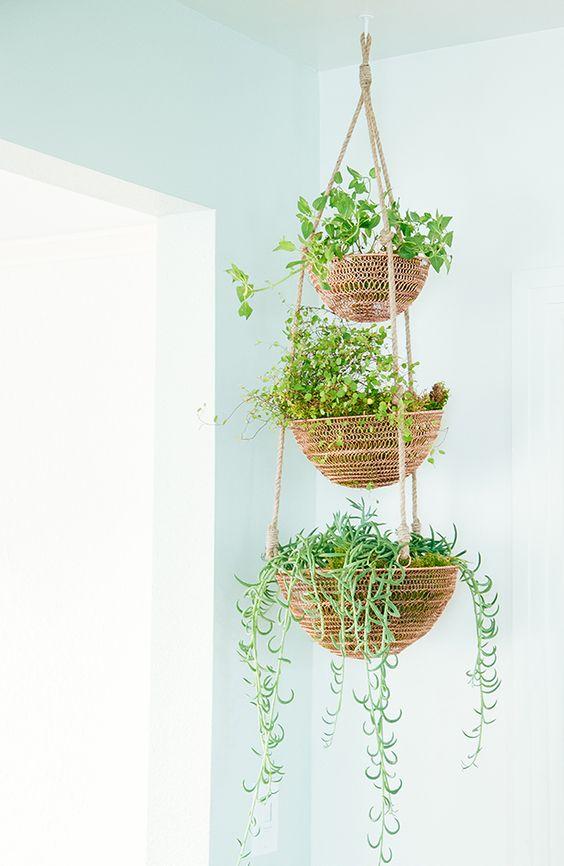 Disenos de maceteros colgantes para decorar tu casa 12 - Decoracion de maceteros ...