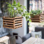 Diseños de maceteros colgantes para decorar tu casa