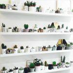 Decoración de interiores con repisas y plantas